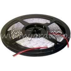 LED pásek 5m 3825 Studená Bílá 120LED/m 9,5W/m 12V