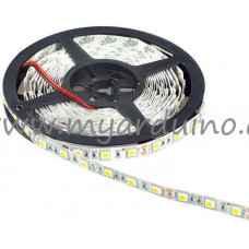 LED pásek 5m 5050 Studená Bílá
